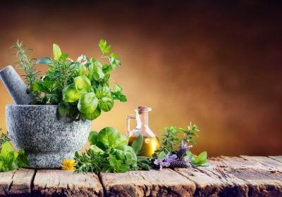 zioła z ogródka